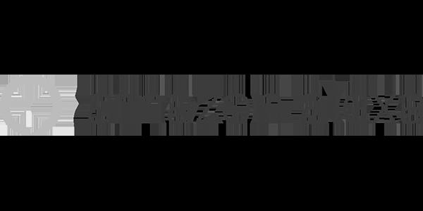 logo google assistant